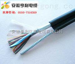 ZRC-JYJPVRP22-(ZRC-JYJPVRP22计算机电缆厂家)(石油设备系统)(海城)