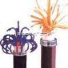 ZR-PTYA22ZR-PTYA22阻燃铁路信号电缆