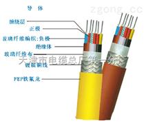 ZR192-KFFP2R、ZR192-FF46 多芯耐高温电缆